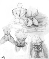 Glute Studies (for Teeth) by ydt81