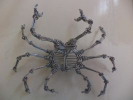 CRAB in wire I by TheWallProducciones