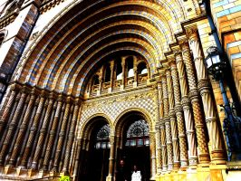 National History Museum Entrance by tro0oy