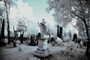 Cemetery 2 by BoholmPhotography