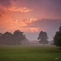 Warnham Golf Course 1 by andy1349
