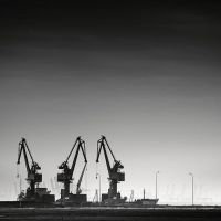 3 Cranes by andreupardales