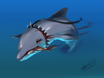 30 Day Monster Challenge - Day 12 - a dolphin by sp00ntane0us