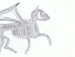Thestral by Ybpopular