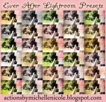 Ever After Lightroom Presets by chupla