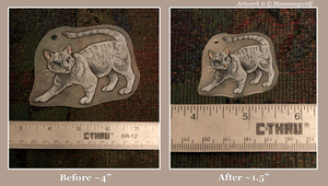 Shrinky Dink charm before-and-after comparison by MoonsongWolf