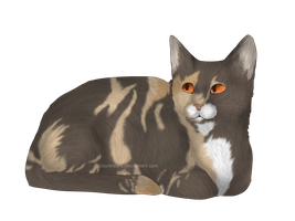 Willowleaf :Adoptable Audition: by courtneyrc