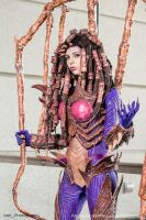 Starcraft: Infested Kerrigan by XenPhotos