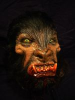 werewolf face by SDSFX