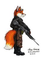 Fox Mercenary by KalahariFox