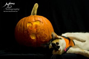 Fiona Happy Halloween by Nebey