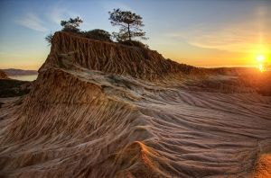 Torrey Pines by lonewolf565