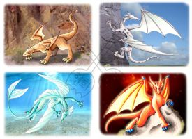 Commision: Elemental Dragons by BrokenPuppet