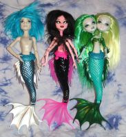 Merman, Siren, and Mermaid by rainbow1977