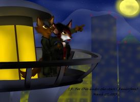 A Beautiful Night by Fox-under-the-stars