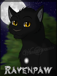 Headshot Serie: Ravenpaw by Winterstream