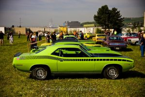 Green Mopar Muscle Cars by AmericanMuscle
