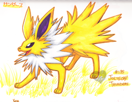 +JOLTEON+ by FENNEKlNS