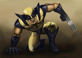 Classic Wolverine by Martin-Saelens