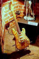 guitar Amber by PaulinePhotos