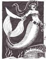 Pirate Mermaid by MichaelPowellArt