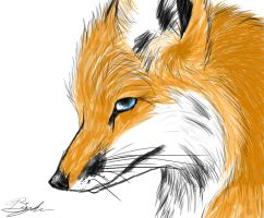 Fox Headshot Speedpaint by InkFoxie