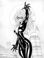black cat 02 by tamashi07