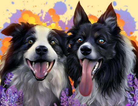 Buster Sam collies by Mythicalpalette