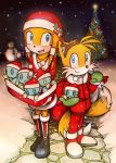 2010 Merry Christmas by Windhover07