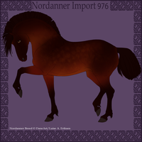 Nordanner Import 976 by DovieCaba