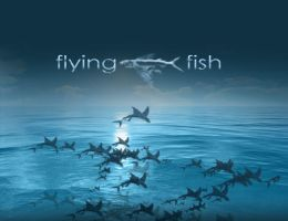 Flying Fish by aleksite