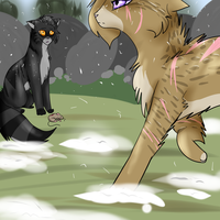 ~Leaf meets Tiger~ by XFlying-With-FireX