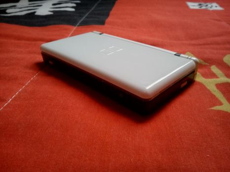 Custom White and Black DS Lite - Back by Diego9000