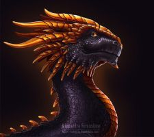 Black Dragon by Sedeptra