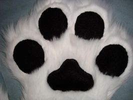 Paw pad close up by Nevask