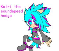 sonic oc adoptable.:taken:. by Twilight-Entropy