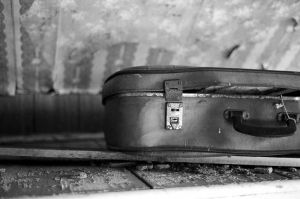 suitcase by butterflywheel