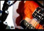 Soul of the Bass by FehlgamDTroice