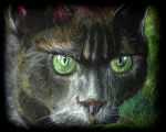 Big Green Eyes by philippeL
