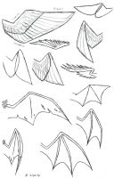Wing Study by VibrantEchoes
