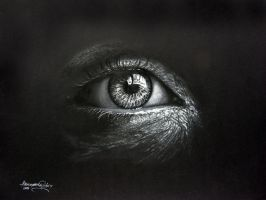 Dark eye! by hieronymus83