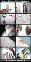 Macro photos compilation by tjchagas