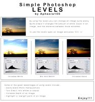 Photoshop Levels - Tutorial by aphasia100stock