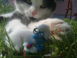 Cat with smurfs by epressutikeh