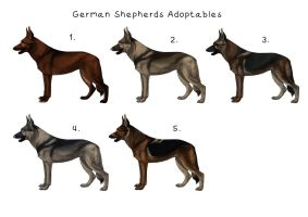 CLOSED - Adoptables German Shepherds by Maranez