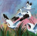 Whooping Cranes by Nachiii