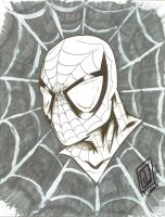 Spidey Ink and marker Head Sketch by JSimonART
