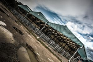 Haverfordwest Cattle Market 2 by Psycho-pete