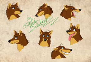 Wusli face expression concept by StanHoneyThief