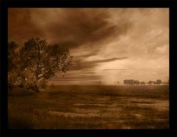 Outback 2 by Dyer-Consequences